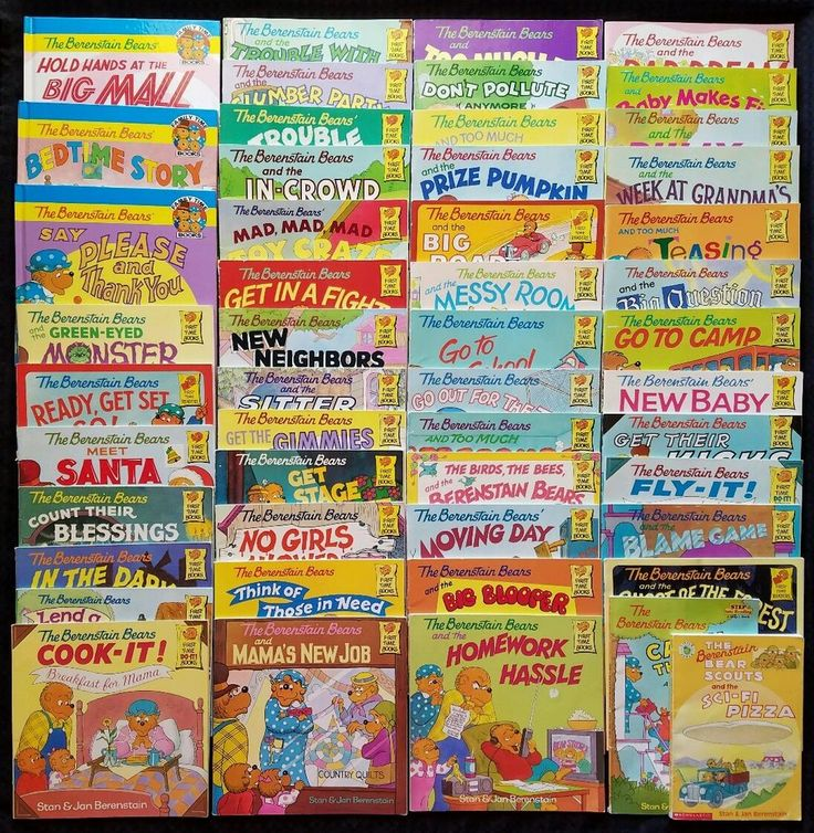 Berenstain Bears Mixed Lot of 50 First & Family Time Books Instant Library