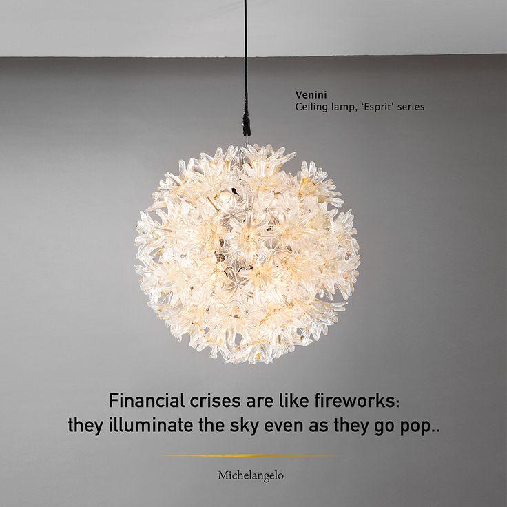 Financial crises are like fireworks: they illuminate the sky even as they go pop.