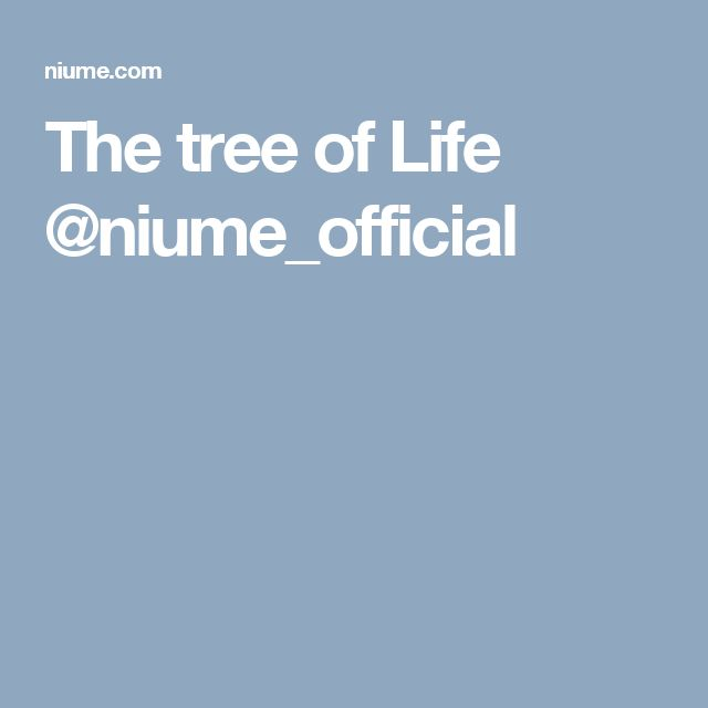 The tree of Life @niume_official