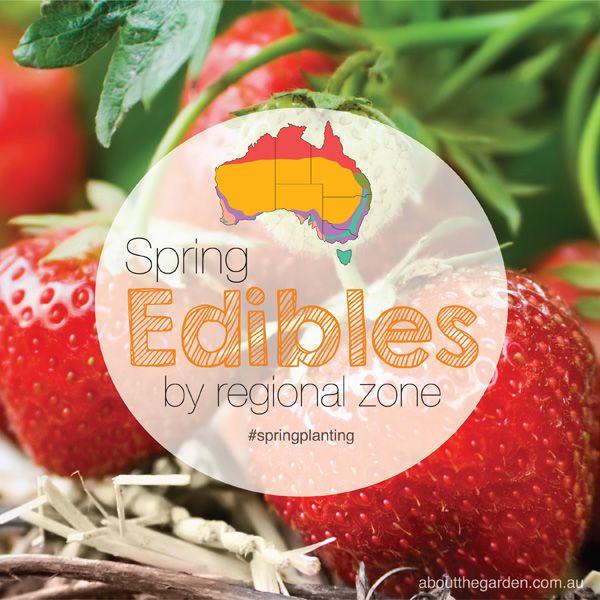 94 best gardening edibles images on pinterest for Gardening zones australia