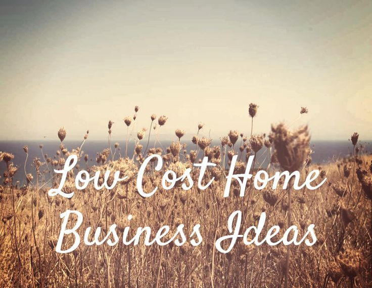 From Conventional to Quirky: 13 Low Cost Home Business Ideas http://franchise.avenue.eu.com/ business ideas #smallbusiness small business ideas wahm ideas
