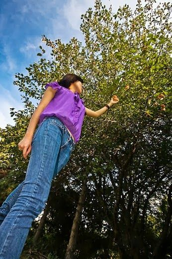 Nothing beats Washington apple picking. Where is your favorite place to go?  Picture by Benson Kua