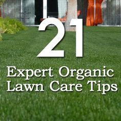 21 Expert Organic Lawn Care Tips:: Visit us at www.wbfarmstore.net for all your lawn care needs!