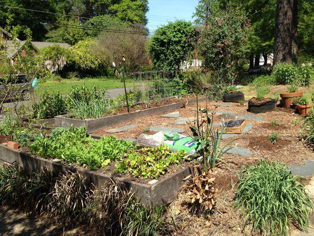 Les 25 meilleures id es de la cat gorie paillage jardin for Arrosage jardin potager