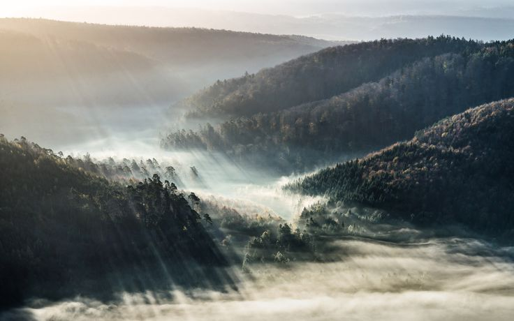 6 Photographers Offer Tips on Capturing the Magic and Mystery of Fog