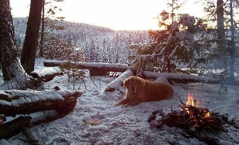 winter camping in prince george bc