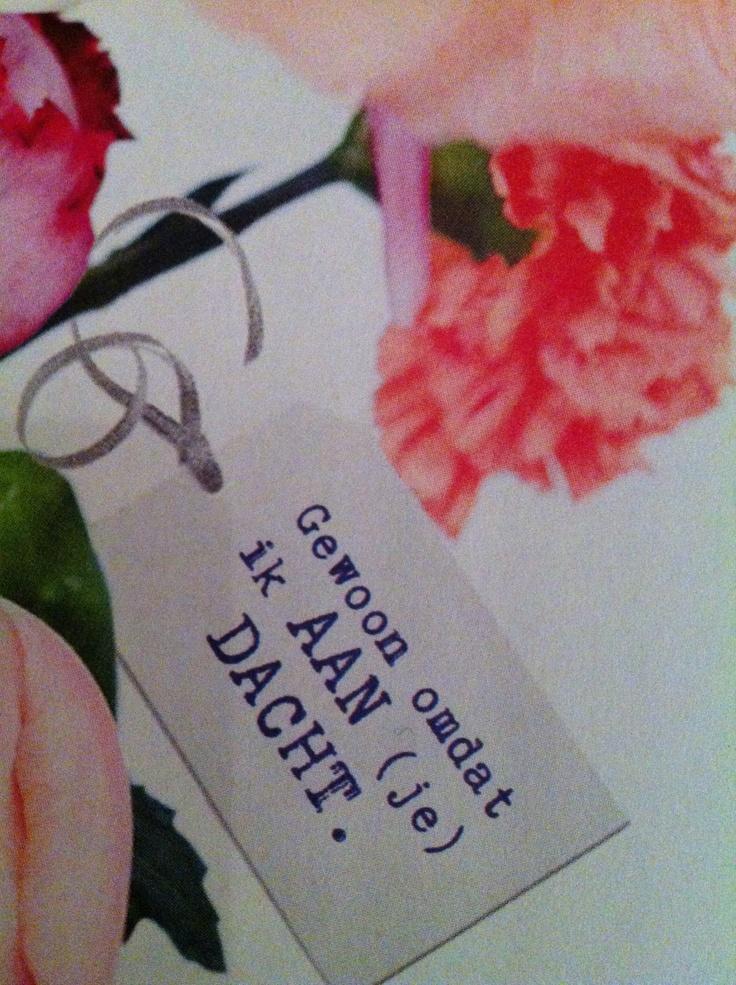 de taal van bloemen. Aandacht.
