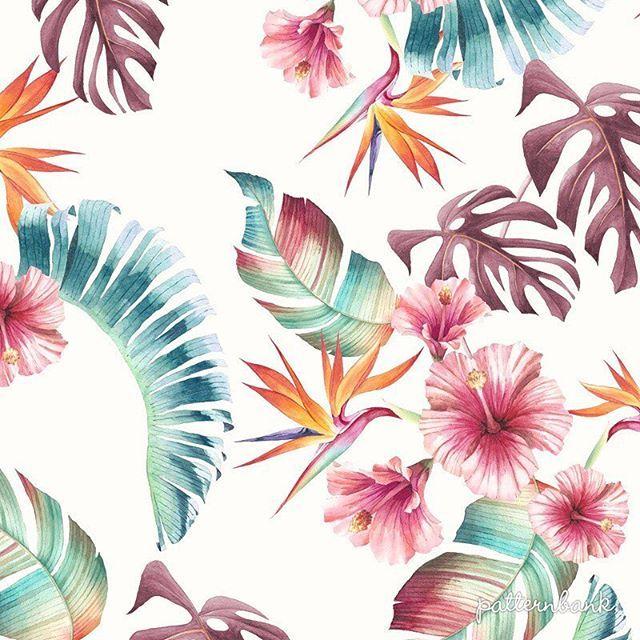 #aquarelle #newonpatternbank #patternbank #textiledesigner #tropicalpattern #patternbankdesigner #floralprint #handpainted #surfacedesign IG: @shockrider2005