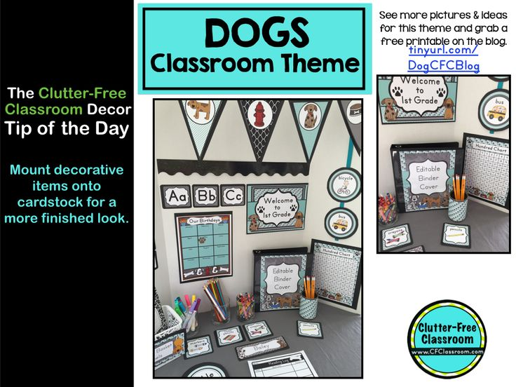Classroom Decor Items : Best dog classroom theme ideas and decor images on