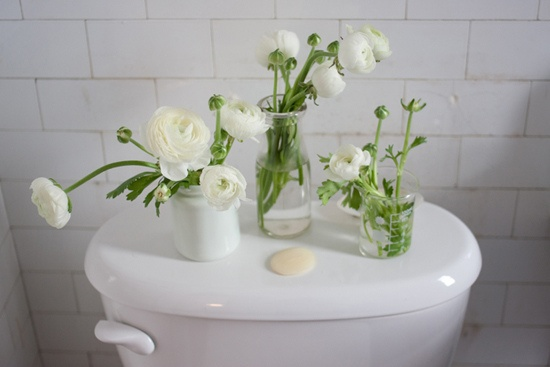 Toilet Bloomage: Who says you magazines and tissues go on