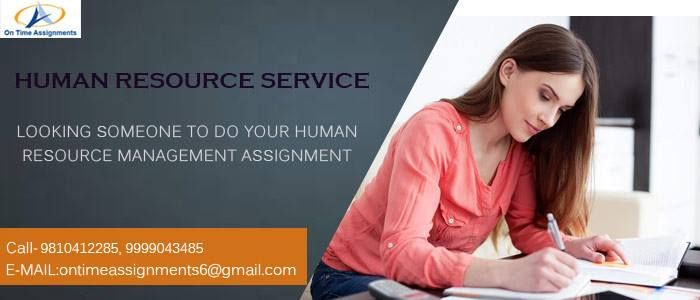 Assignments experts
