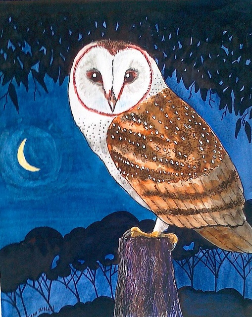 180 best images about painted owls on pinterest for Night owl paint color