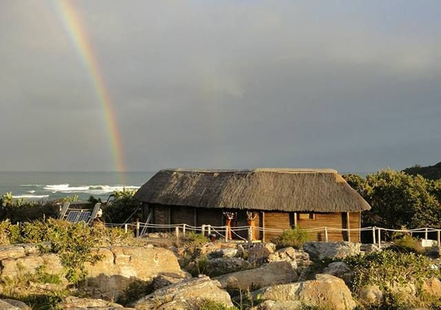 Wild coast Cabin