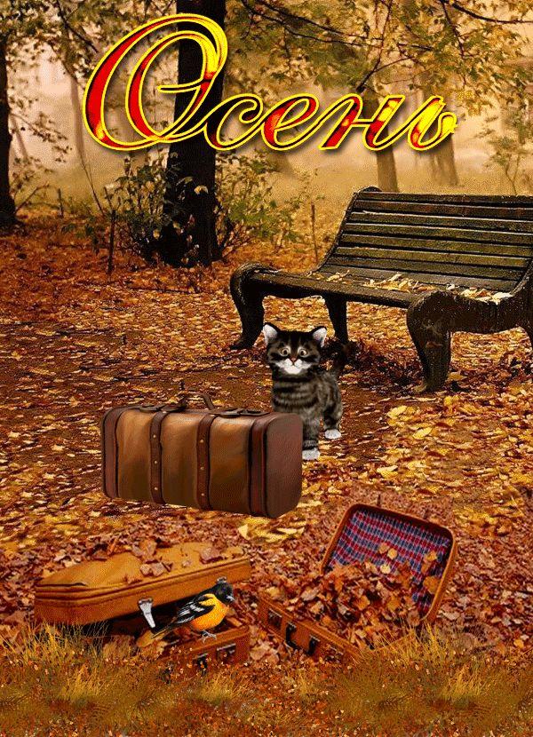 Осень -https://img-fotki.yandex.ru/get/477095/313346088.c/0_178599_a9493707_orig