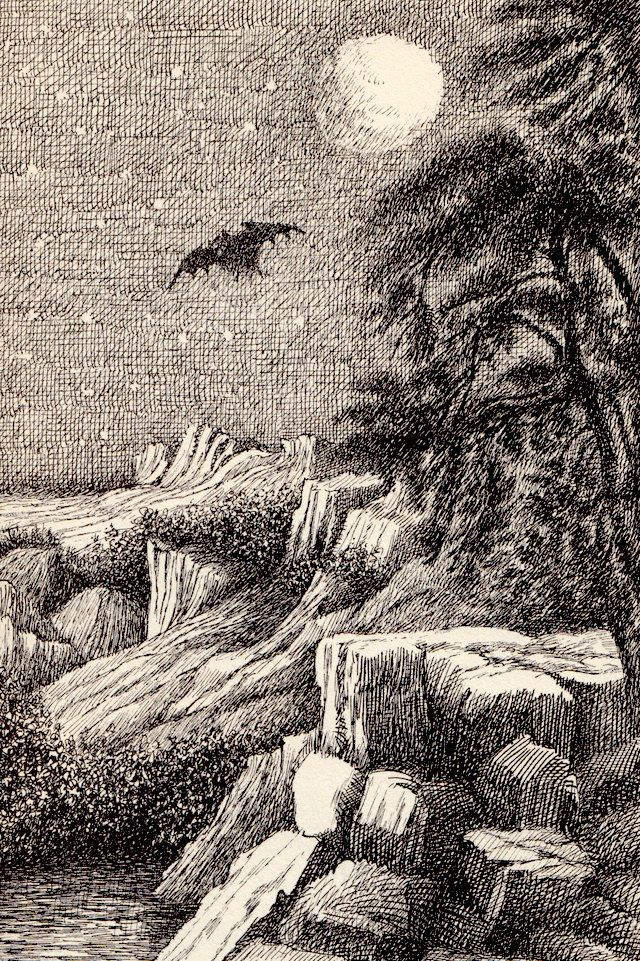 """""""The Bat-Poet"""" by Randall Jarrell, illustrated by Maurice Sendak (1964) (https://www.etsy.com/listing/192068743/the-bat-poet-by-randall-jarrell?ref=af_new_item)"""