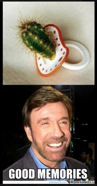 Chuck Norris jokes will be funny forever