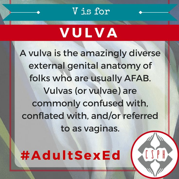 V is for Vulva | ABCs of Adult Sex Ed • The Center for Sexual Pleasure & Health
