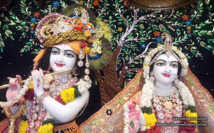 To view Radha Krishna Close Up  Wallpaper of ISKCON Chennai in difference sizes visit - http://harekrishnawallpapers.com/sri-sri-radha-krishna-close-up-iskcon-chennai-wallpaper-008/