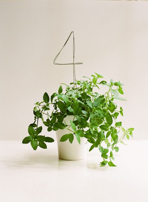 Wire table numbers in potted plant