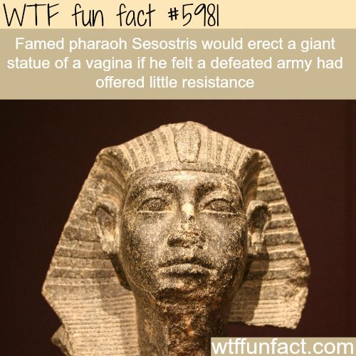 Weirdest facts about pharaohs - WTF fun facts