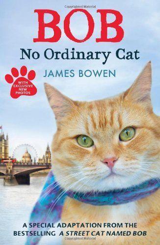 Bob: No Ordinary Cat by James Bowen, http://www.amazon.com/dp/144476490X/ref=cm_sw_r_pi_dp_IbT.rb0151ZYV