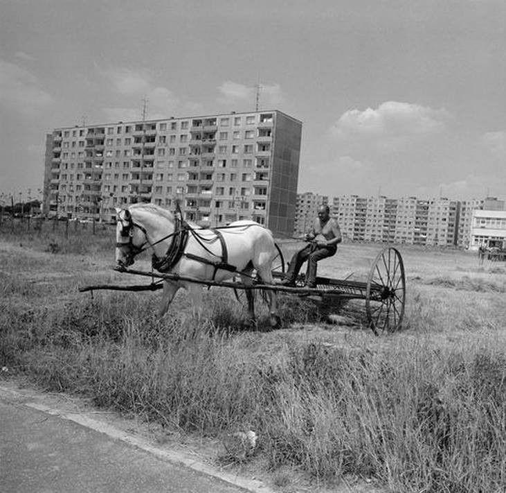 anton-podstrasky-016.jpg