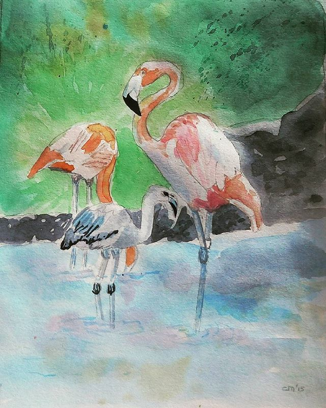 Aquarel flamingo's #aquarel #aquarelle #pittura #watercolor #watercolour #watercolours #watercolourart #watercolour_gallery #watercolors #flamingo #flamingos #flamant #flamantrose #fenicottero #flamenco #tropicalbirds #tropical #vogels #birds #birdsofinstagram #birds_of_instagram #art_highlight #art_collective #arts #myart #mywork #forsale #myartwork #instaart #instabird