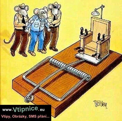 Kreslené vtipy - myší trest