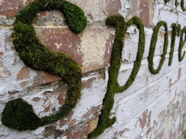 Moss Graffiti: Graffiti made of moss by Anna Garforth in London. (Envisioning house #'s in my head)    For DIY instructions: http://www.storiesfromspace.co.uk/data/html/mossgraffiti.html