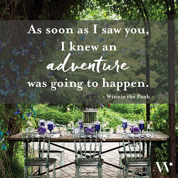 197 best inspiring love quotes images on pinterest inspirational lovequote as soon as i saw you i knew an adventure was inspiring love quotesinspirationalwedding themeswedding junglespirit Images