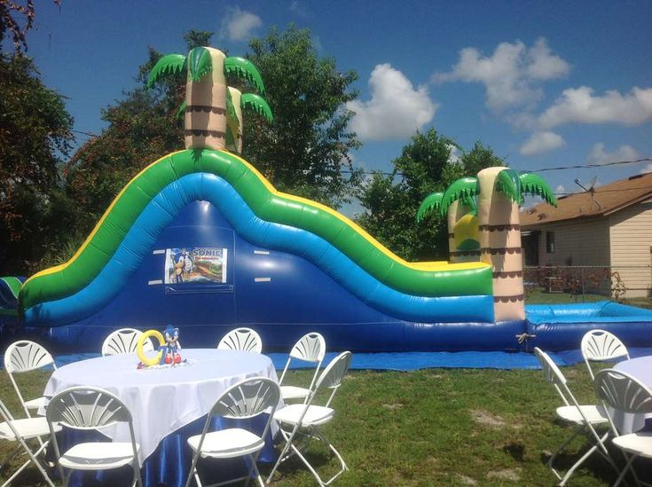 Sonic the Hedgehog Birthday Party Ideas | Photo 37 of 38