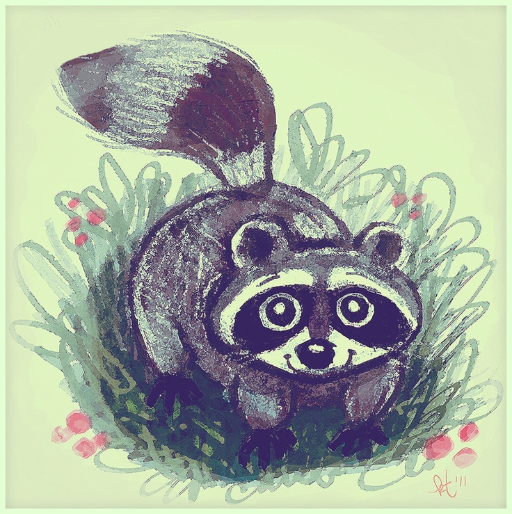 Oh so cute raccoon!