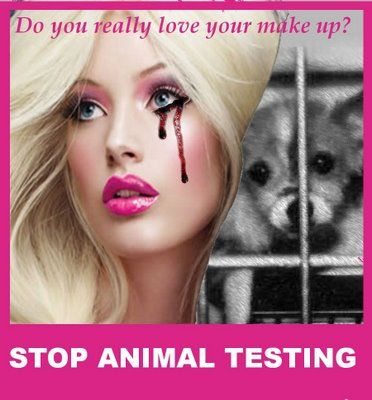 How would i persuade someone to be against animal cruelty?