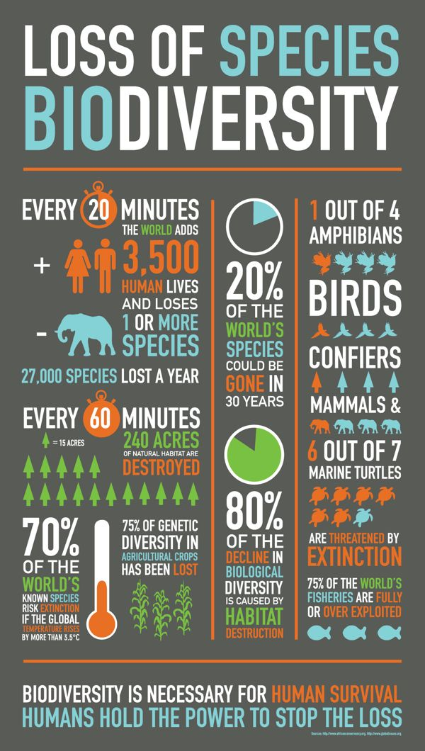 I like how simple this infographic is. It shows some alarming statistics but it…