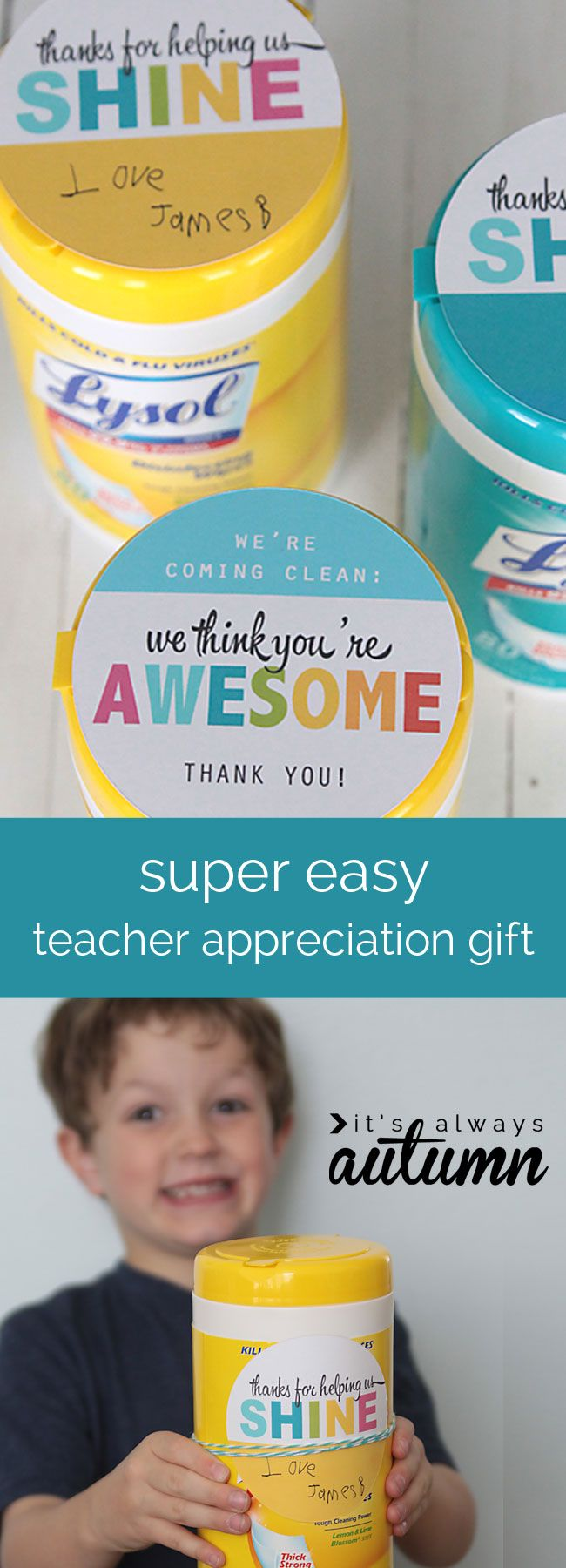 I love this! Cheap, easy, and cute teacher appreciation gift that the teacher will actually use! They get so many goodies they end up throwing away - how about giving Lysol wipes instead? Cute free printable labels.
