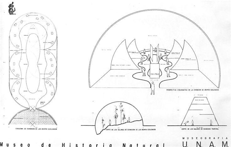 Plano De Detalle Y La Perspectiva Interior De Una Sala De