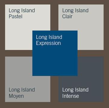 Palette Long Island : la combinaison du gris et du bleu