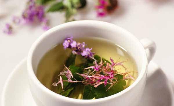 Как заваривать иван - чай. Лечебные свойства. Применение   Блог Ирины Зайцевой