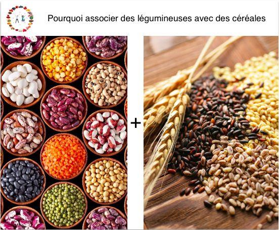 Associer des légumineuses avec des céréales est une combinaison alimentaire qui vous permettra un apport de protéines bien plus important.