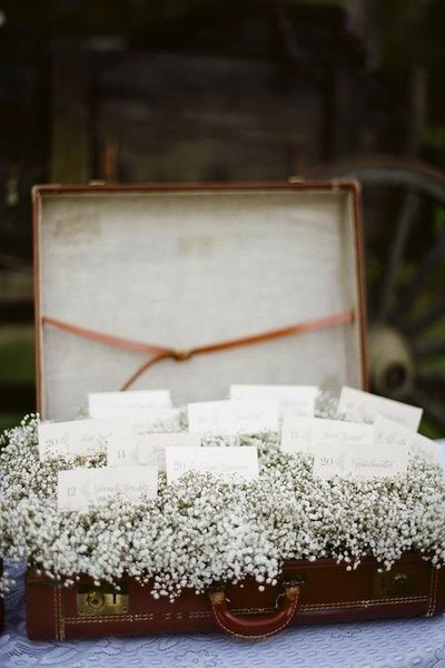 """Baby's breath can have the look of softly fallen snow when packed together like it was in this vintage suitcase. Escort cards were then placed atop the baby's breath. Another way to make place cards with baby's breath is to make small bouquets like these and then make small tags with the guests' names on them."""