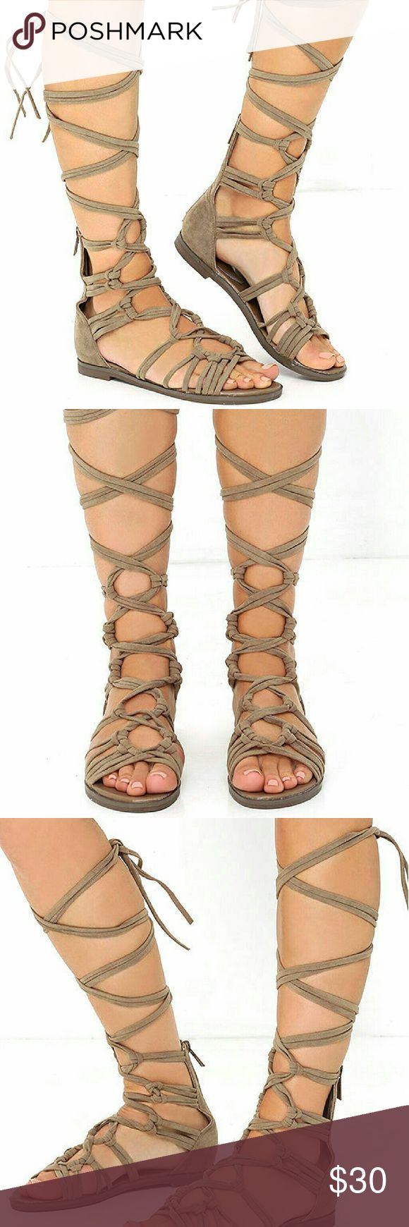 "NWOT Taupe Tall Suede Lace Up Gladiator Sandals Peep toe, VEGAN suede knots and crosses up to long laces that wrap and tie around the leg. 5"" zipper at back, 0.5"" rubber heel, cushioned insole, nonskid rubber sole. All vegan friendly, man made materials. Never worn. Shoes Sandals"