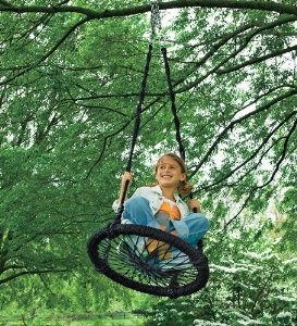 A new twist on the tire swing