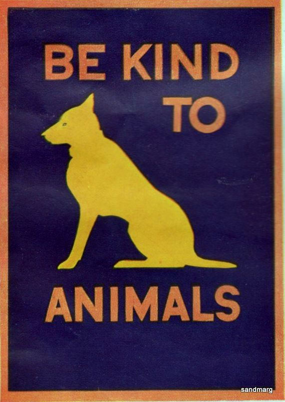 Be Kind To Animals 1930s Kindness To Animals Animal Quotes Dog