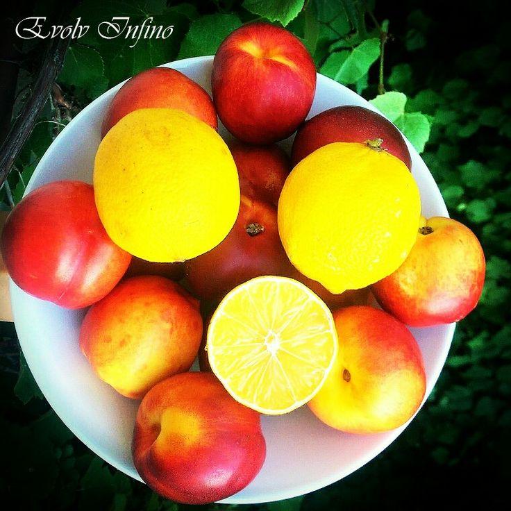 Nectarines - Healthy snack idea