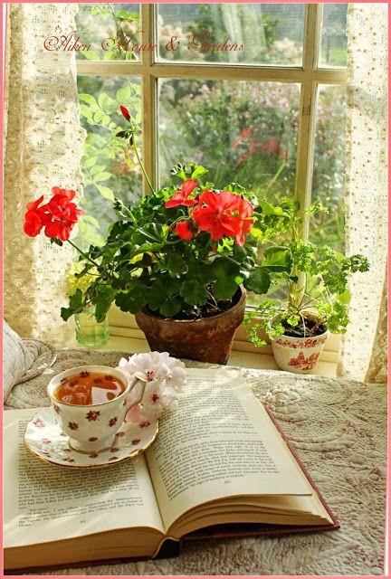 Get Comfy & Cosy - tea and a good book