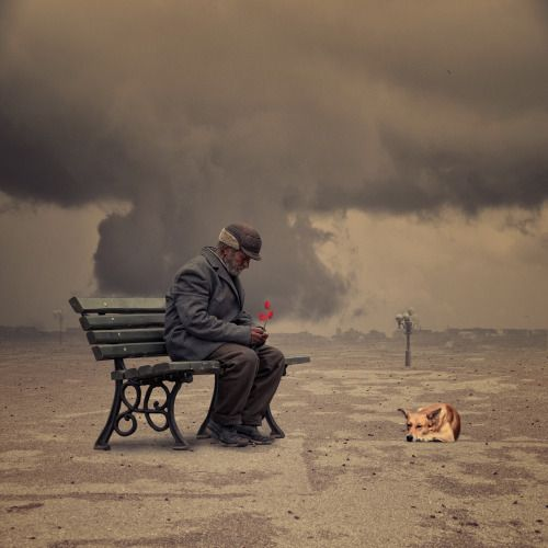 Caras Ionut (Romania), photographer - The lyrics are only for my soul  undefined