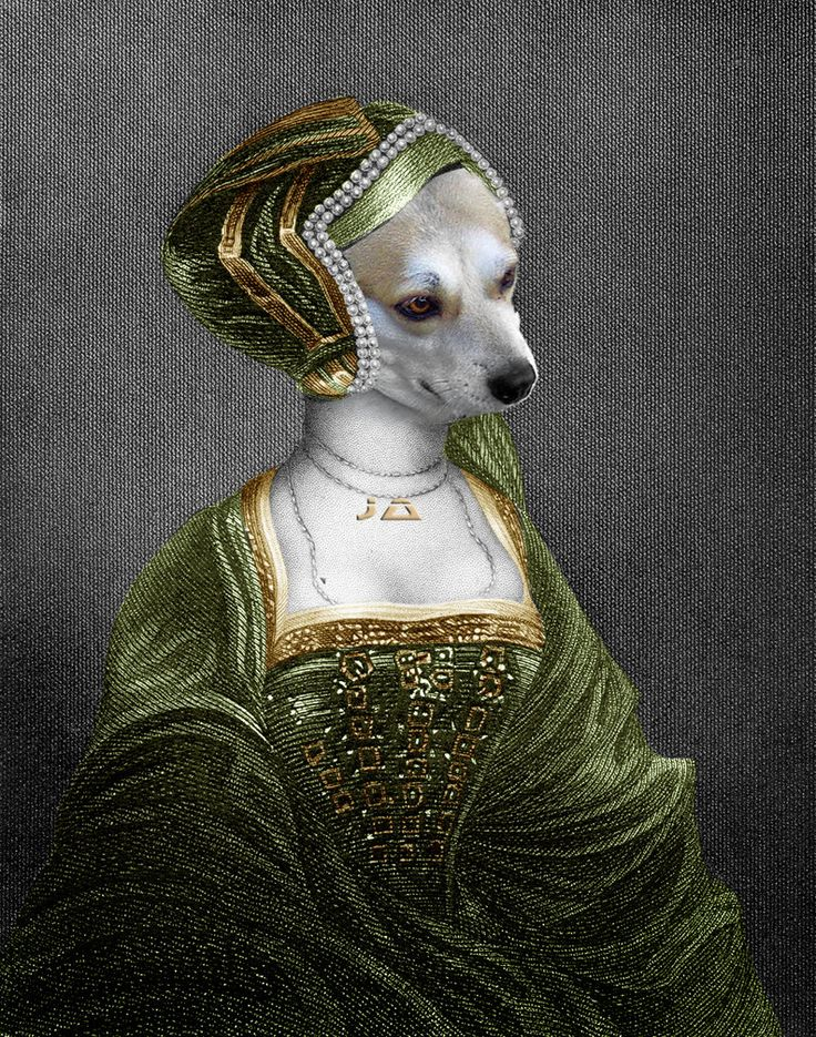 Medieval Dog SuperJA - 01 by manon ghiurco on DeviantArt