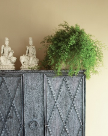 Love the fluffy look of this Asparagus Fern, especially for a bedroom.  But you're only supposed to move it in for winter apparently so probably not the best choice.