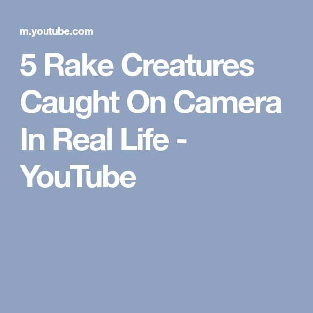 5 Rake Creatures Caught On Camera In Real Life - YouTube