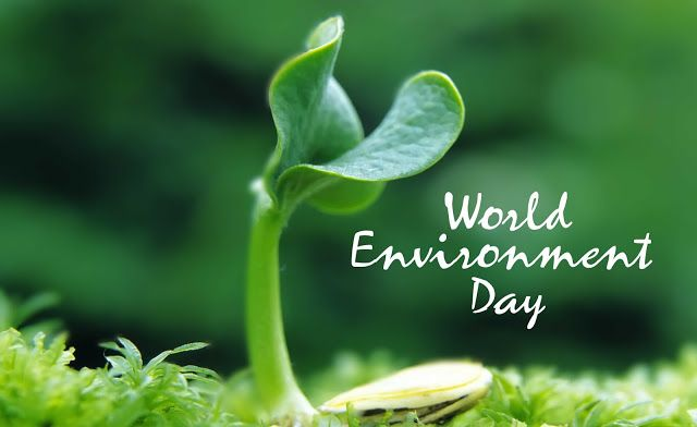 oration about environment essay There is a great need to conserve and protect the environment, to develop forests and to conserve the wildlife this has become imperative and an urgent requirement.